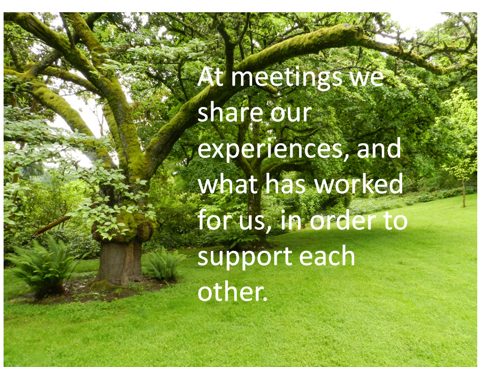 View of a park setting. At meetings we share our experiences, and what has worked for us, in order to support each other.